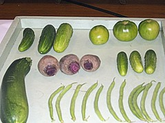 Tray Of Fresh Vegetables.