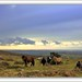 Family Group looking across Dartmoor to Plymouth Sound by PAUL Y-D