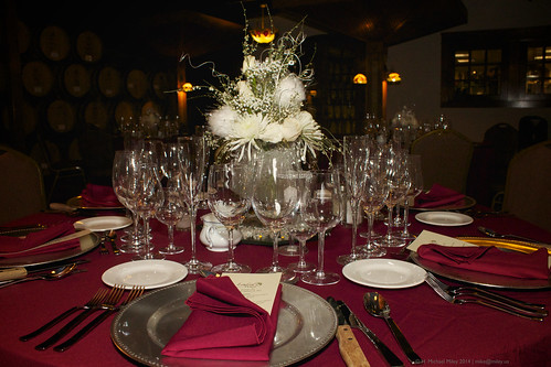 2014 Lynfred Party Room 28 | by Mike Miley