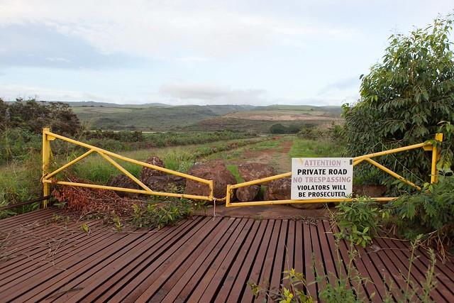 GMO field in Kauai