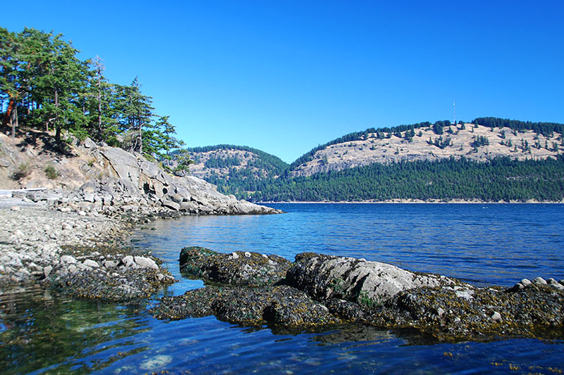 Beach at Conery Crescent, Pender Islands, Gulf Islands, Georgia Strait, British Columbia, Canada