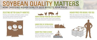 Soy Quality Infographic