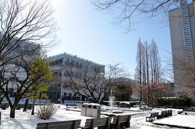 理工キャンパス