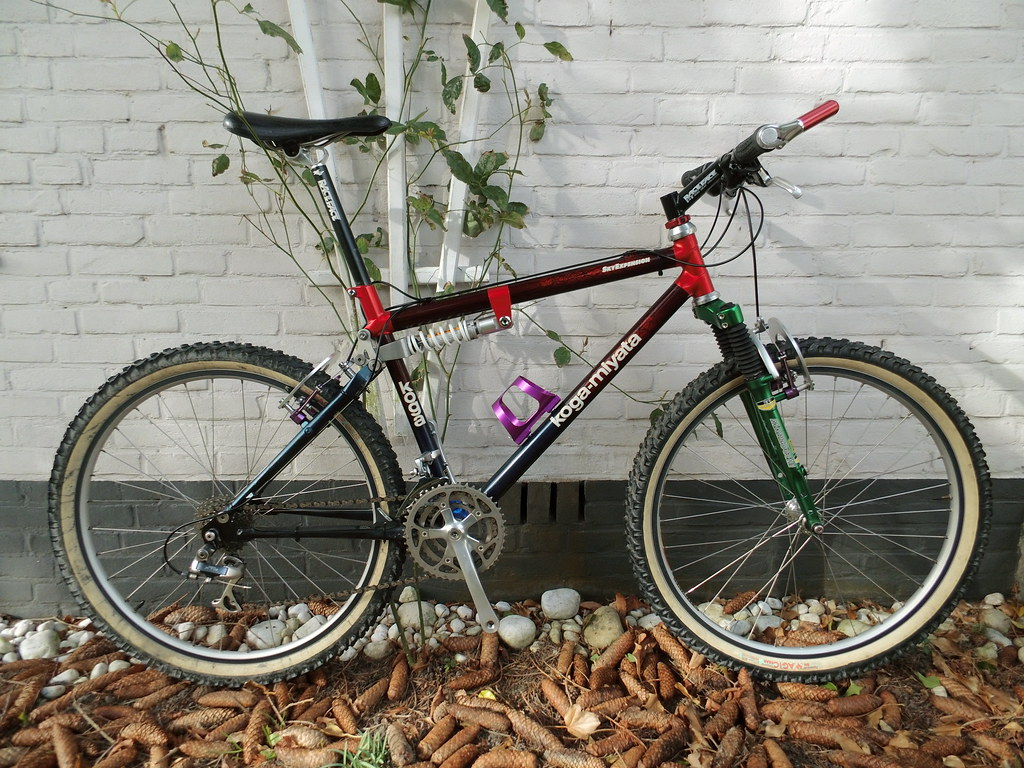 Show us your vintage mountain bikes! - Page 169 - Bike Forums