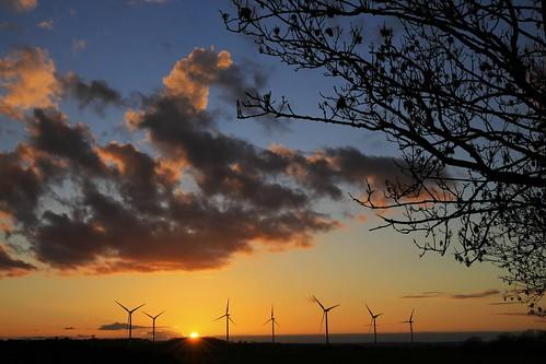 sunset sky tree windmill night clouds tramonto wind cloudy farm farming cielo albero windfarm turbines ef2470mmf28lii