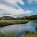 Dysynni river, Tywyn, Gwynedd by babs pix