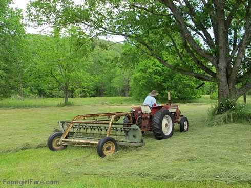 (28-16) Raking the dried hay into windrows the day after cutting - FarmgirlFare.com