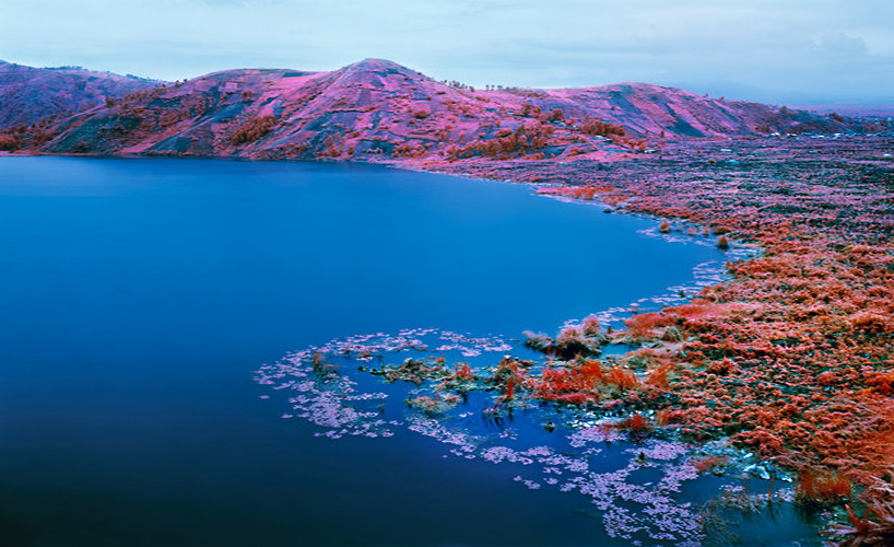 richard-mosse-at-venice-art-biennale-designboom4