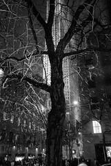 Manhattan #19 (Snow at Rockefeller Center)