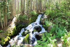 Boulder Brook's waterfall