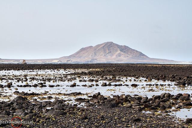 Shark Bay Landscape