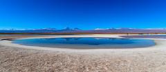 Laguna Cejar Chile