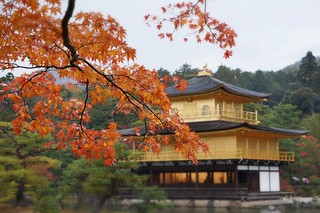 Temple of the Golden Pavillon, 金閣寺, Japan, Nov. 25, 2013