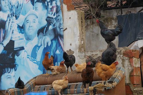 Akyaka, Turkey-102.jpg