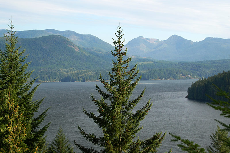 Alberni Inlet viewed from Nahmint Main, Alberni Valley, Vancouver Island, British Columbia
