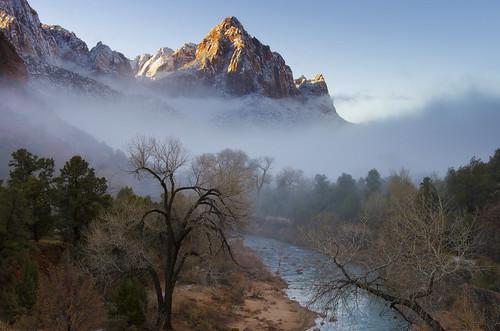 Zion Fog