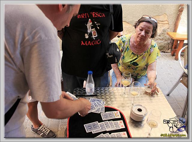 Briviesca mágica 2015 (9)