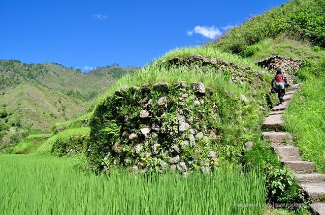 Ascent to Buscalan Kalinga