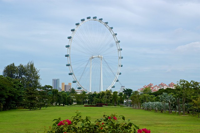 Singapore Flyer ferris wheel seen from the Gardens by the Bay
