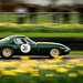 Adam Lindemann and Ludovic Lindsay - 1963 Jaguar E-Type Lightweight Low Drag Coupe at the 2017 Goodwood 75th Members Meeting (Photo 1) by Dave Adams Automotive Images