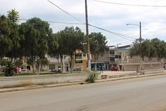 Plaza Elio Santos Macay será remodelada y el sistema de árboles será removido