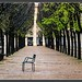 Paris_Jardin du Palais Royal_Rue de Montpensier_1er arrondissement by ferdahejl