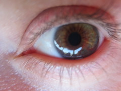 iris, contact lens, brown, red, eyelash, close-up, pink, eye, organ,