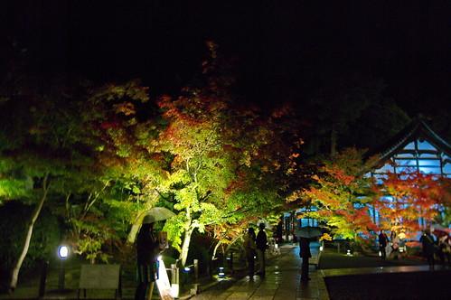 【写真】2012 紅葉 : 永観堂/2020-05-30/IMGP6238