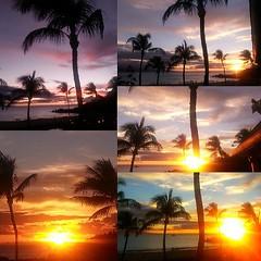 Tonight's masterpiece. #maui #sunset #photooftheday #coreymountphotography #aloha #kaanapali #blackrock #shoots #collage #picoftheday #firesky