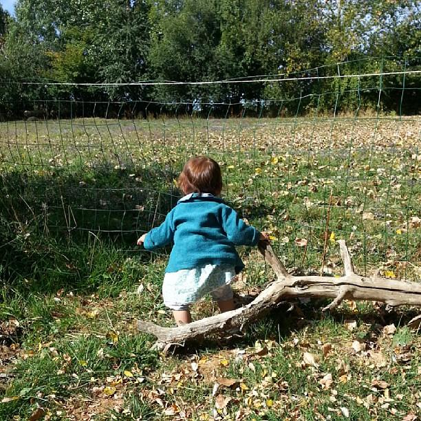 ♥ Néné regarde les moutons pendant qu'on pêche ♥ #nofiltre #blog #blogueuse #ourlittlefamily #france #campingalaferme