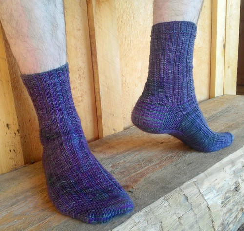 House Color Socks