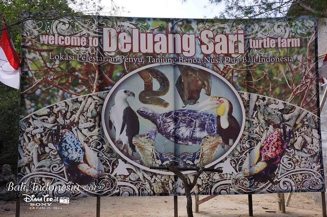 Bali Day 3 Tanjung Benoa Tour 05