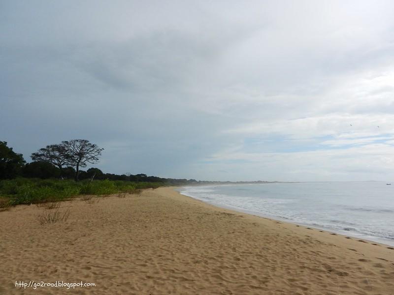 Шри Ланка, побережье Яллы