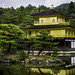 Golden Temple (Kinkaku-ji), Kyoto by Matthew Margot