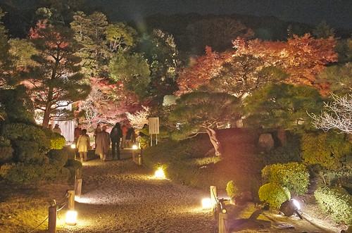 【写真】紅葉 : 知恩院