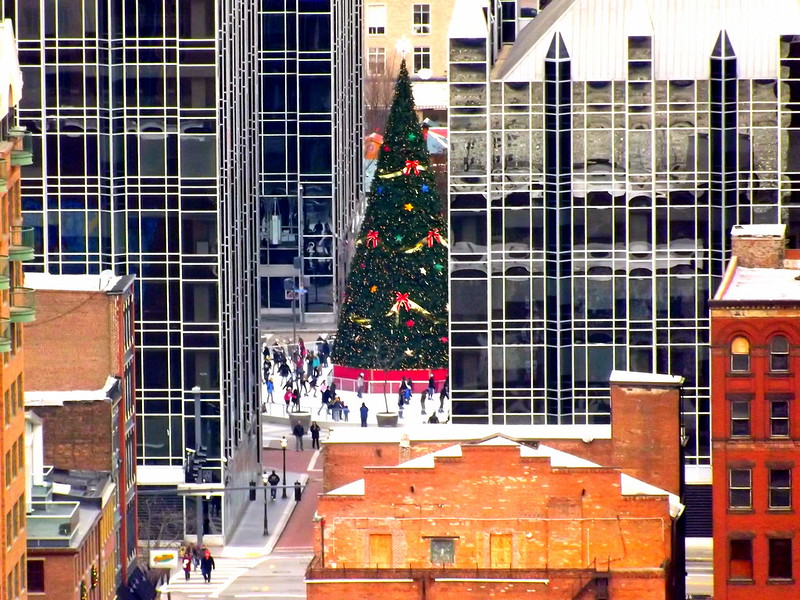 Pittsburgh Christmas Tree
