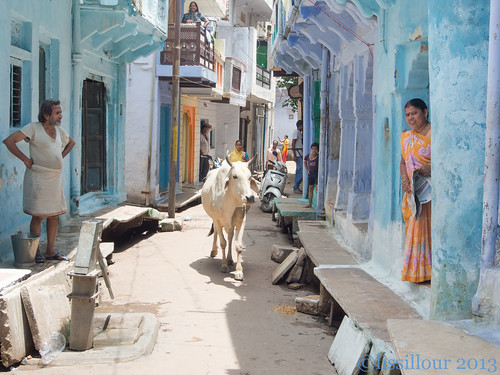 Rues de Gwalior streets   Gwalior --India
