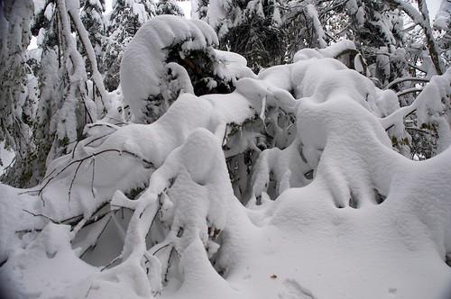 2013-11-26_Mont Fourcat 19