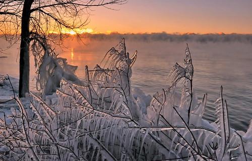 winter mist snow ontario canada cold ice sunrise shot lakeontario unning wintermist ajaxcharm
