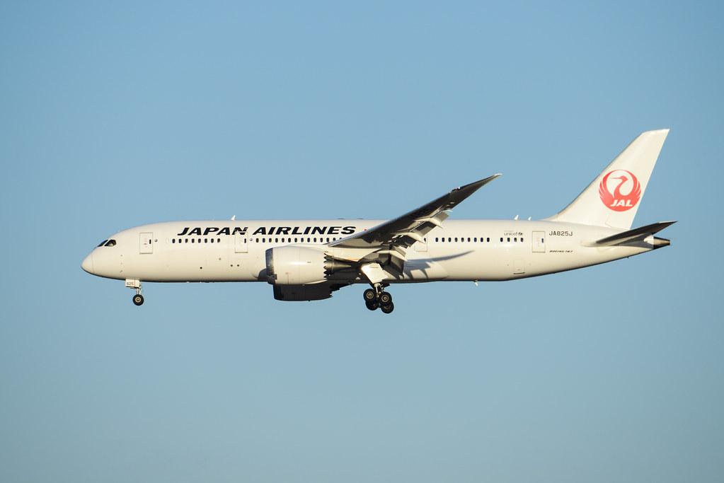 JAL 787-8 JA825J