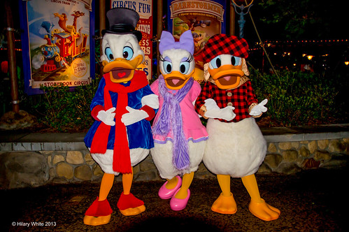 Scrooge McDuck, Daisy & Donald Duck