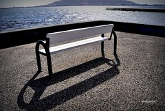 bench, outdoor furniture, furniture, wood, white, black,