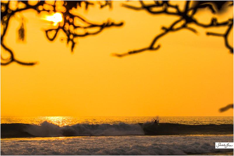 14_CJ_Kanuha_Kona_Banyans_Swell_Surf.jpg