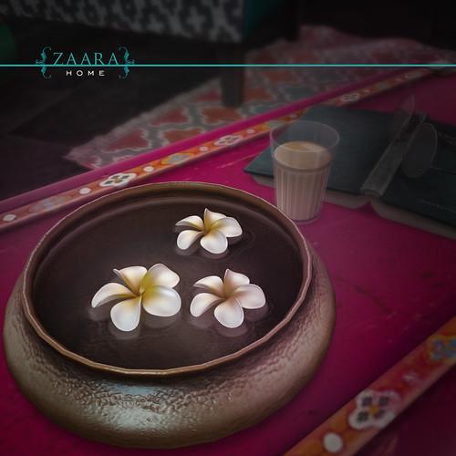 {Zaara} Arcade- details