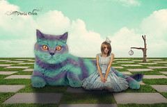 Alice In Wonderland Series