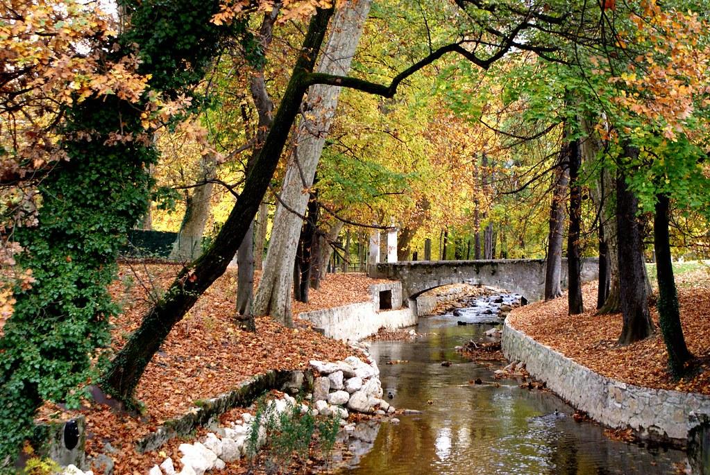 Dans un parc de Chambéry en automne.