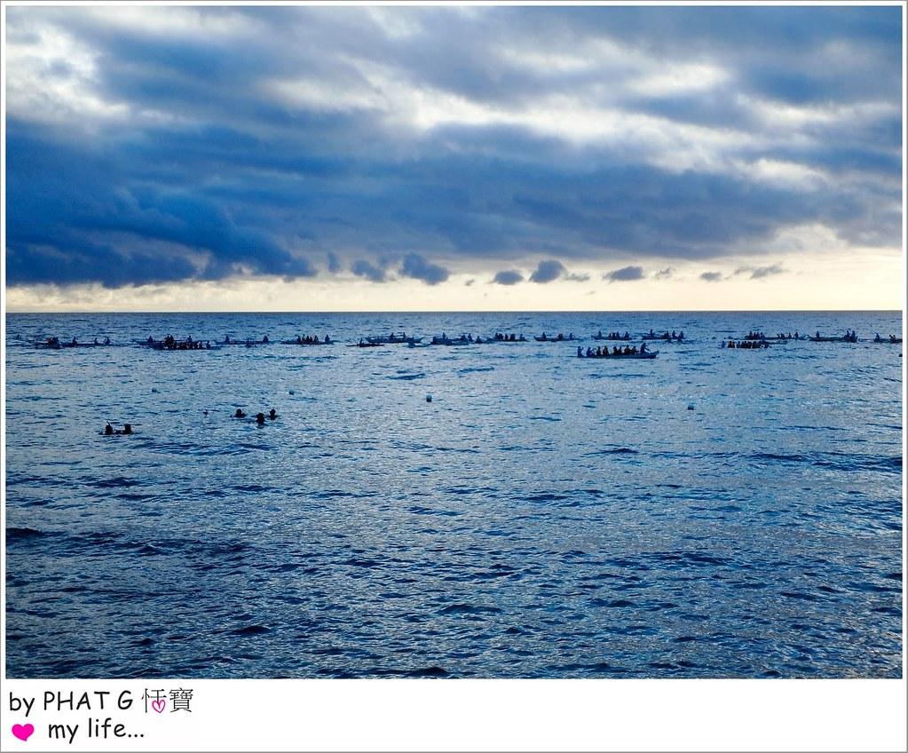 cebu whale shark 04-2