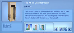 The All-in-One Bathroom
