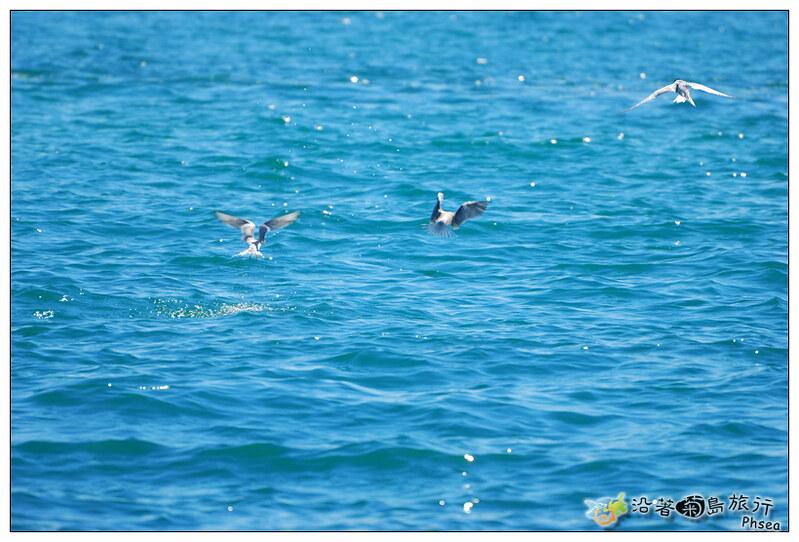 2013歐船長東海休閒漁業_128