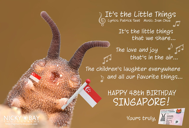 Happy Birthday Singapore!